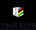 Tomas Slavik - Logo
